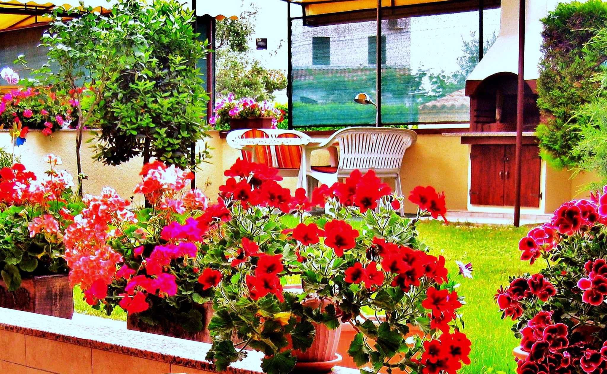 Ferienwohnung mit 55 qm Terrasse mit Meerblick (279767), Fažana, , Istrien, Kroatien, Bild 6