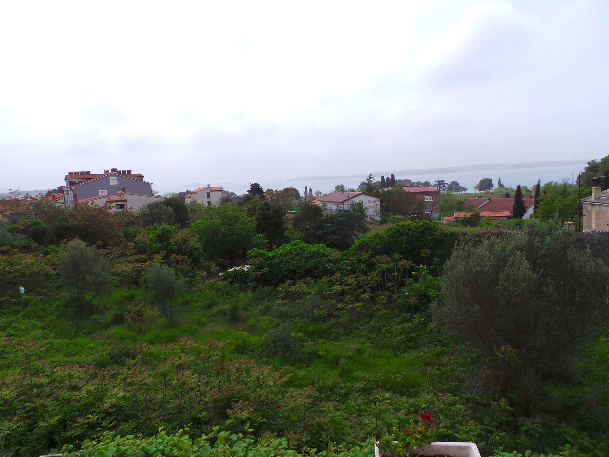 Ferienwohnung mit Blick auf Nationalpark Brijuni (279777), Fažana, , Istrien, Kroatien, Bild 4