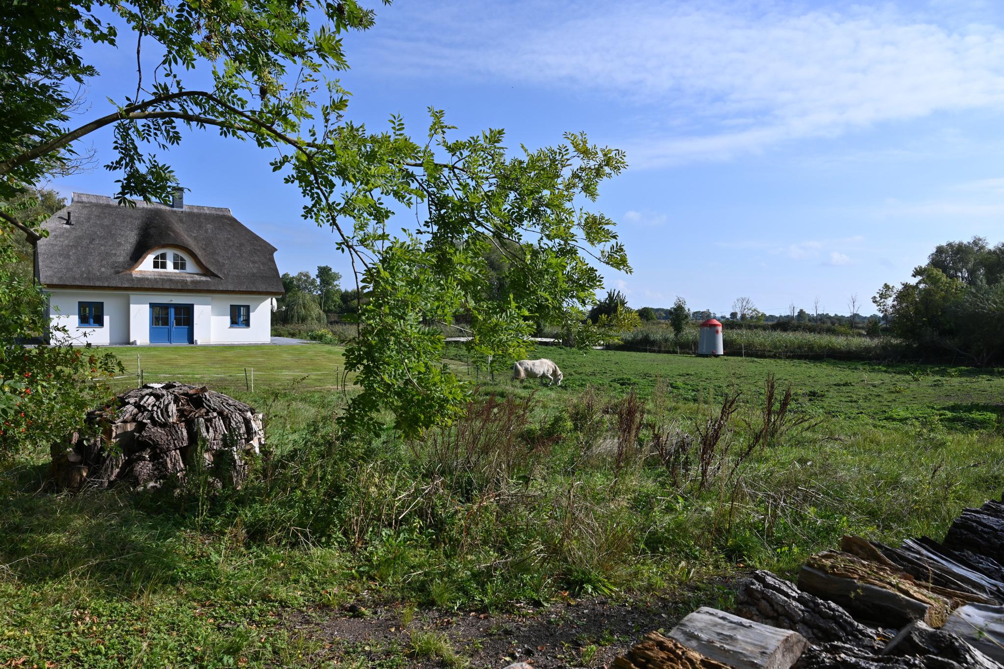 Ferienhaus mit Reetdach, großem Grundstück und Privatweg zum Hafen (2879480), Poseritz, Rügen, Mecklenburg-Vorpommern, Deutschland, Bild 11