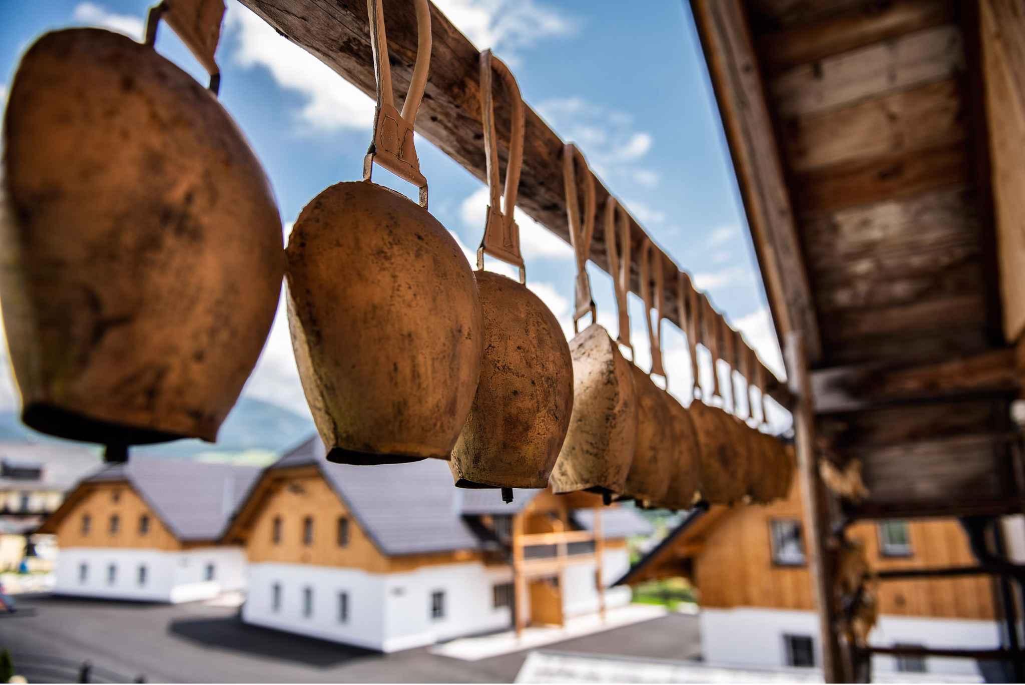 Ferienhaus im Feriendorf Edelweiss (2916176), Mariapfarr, Lungau, Salzburg, Österreich, Bild 49