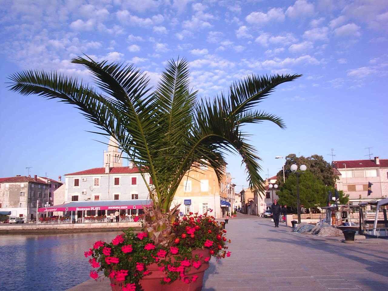 Ferienwohnung mit Klimaanlage und Meerblick (279812), Fažana, , Istrien, Kroatien, Bild 11