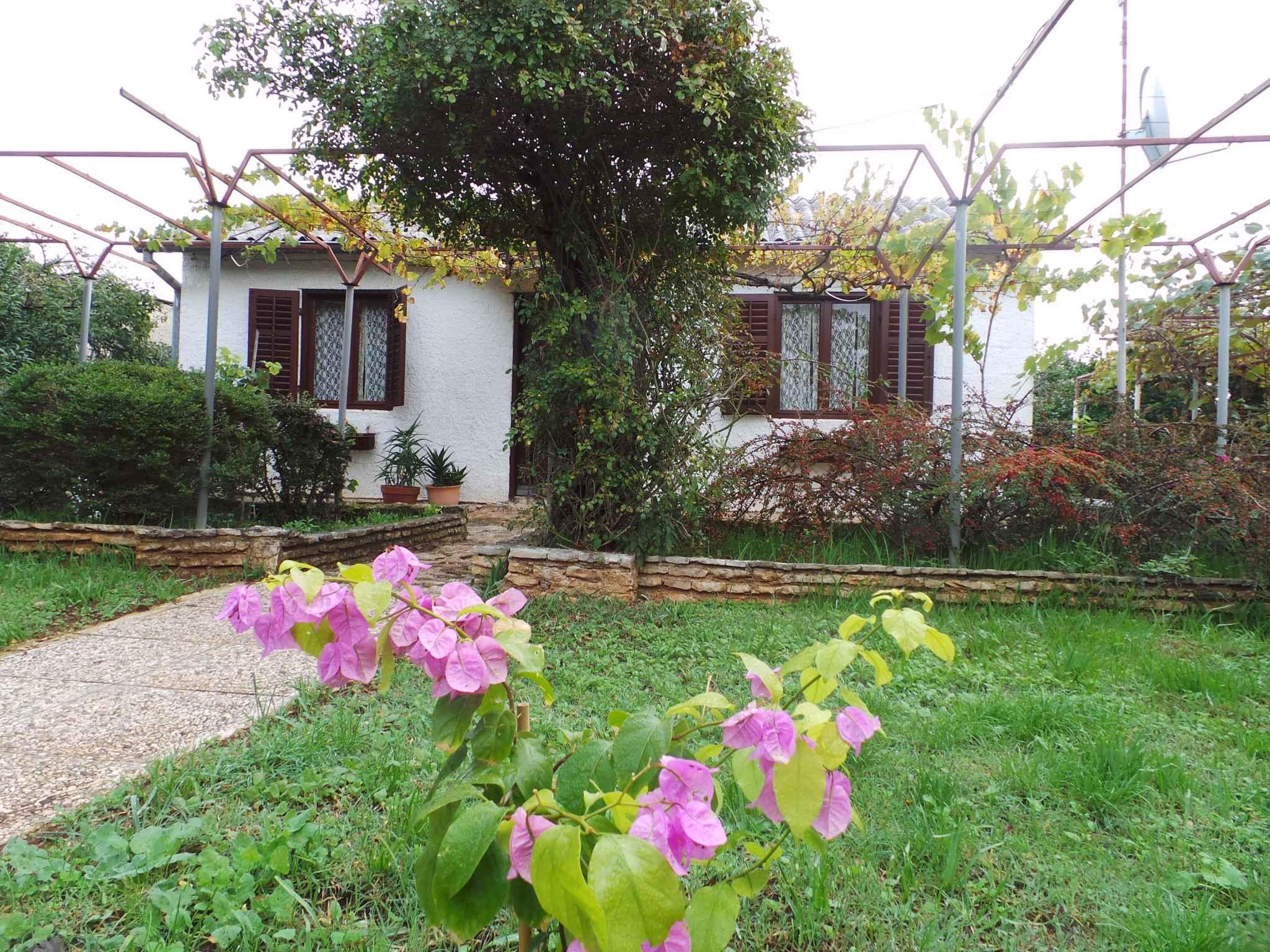 Ferienhaus 300 m zur Adria und mit Garten (280835), Fažana, , Istrien, Kroatien, Bild 1