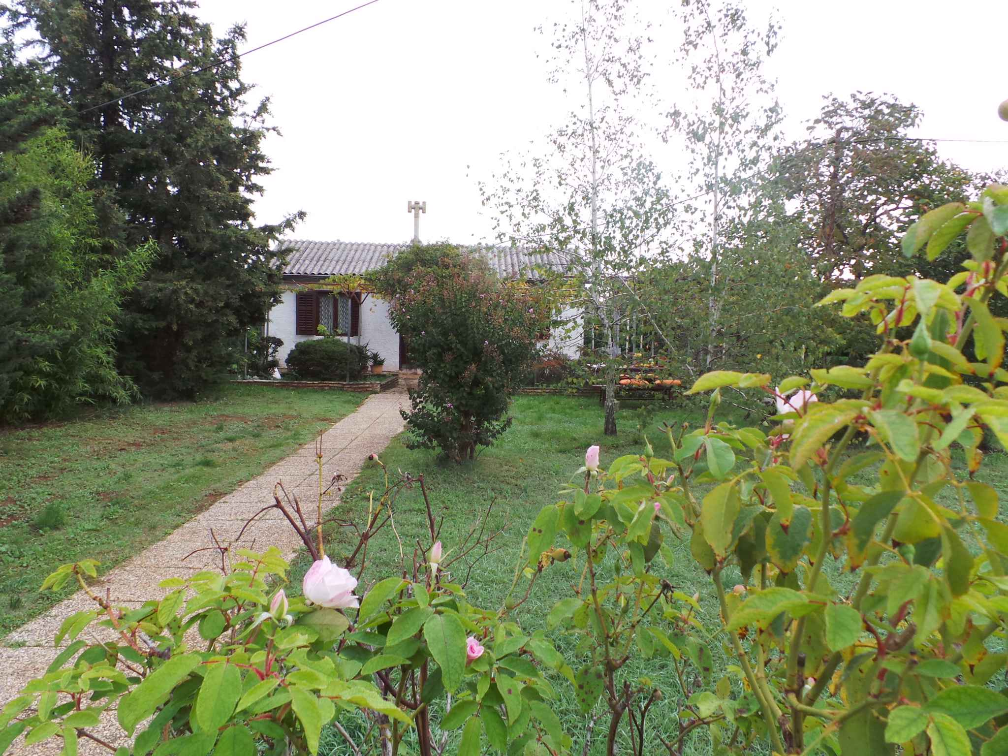 Ferienhaus 300 m zur Adria und mit Garten (280835), Fažana, , Istrien, Kroatien, Bild 2