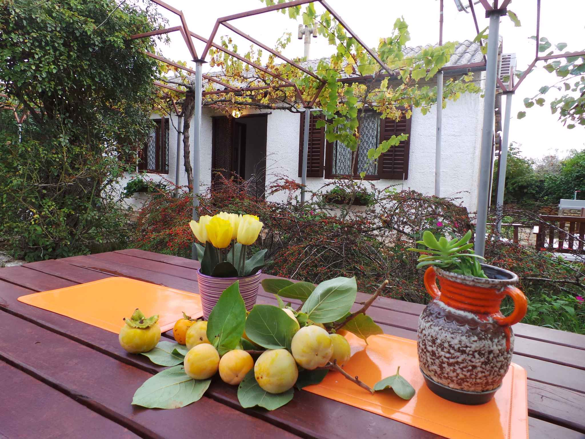 Ferienhaus 300 m zur Adria und mit Garten (280835), Fažana, , Istrien, Kroatien, Bild 4
