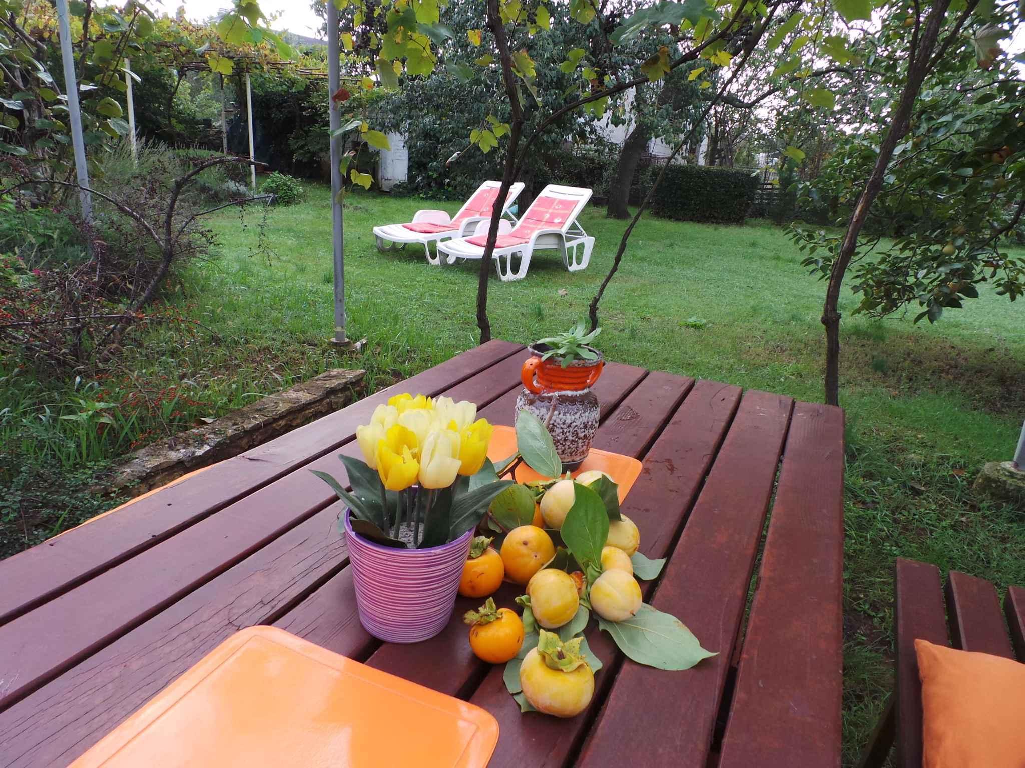 Ferienhaus 300 m zur Adria und mit Garten (280835), Fažana, , Istrien, Kroatien, Bild 6