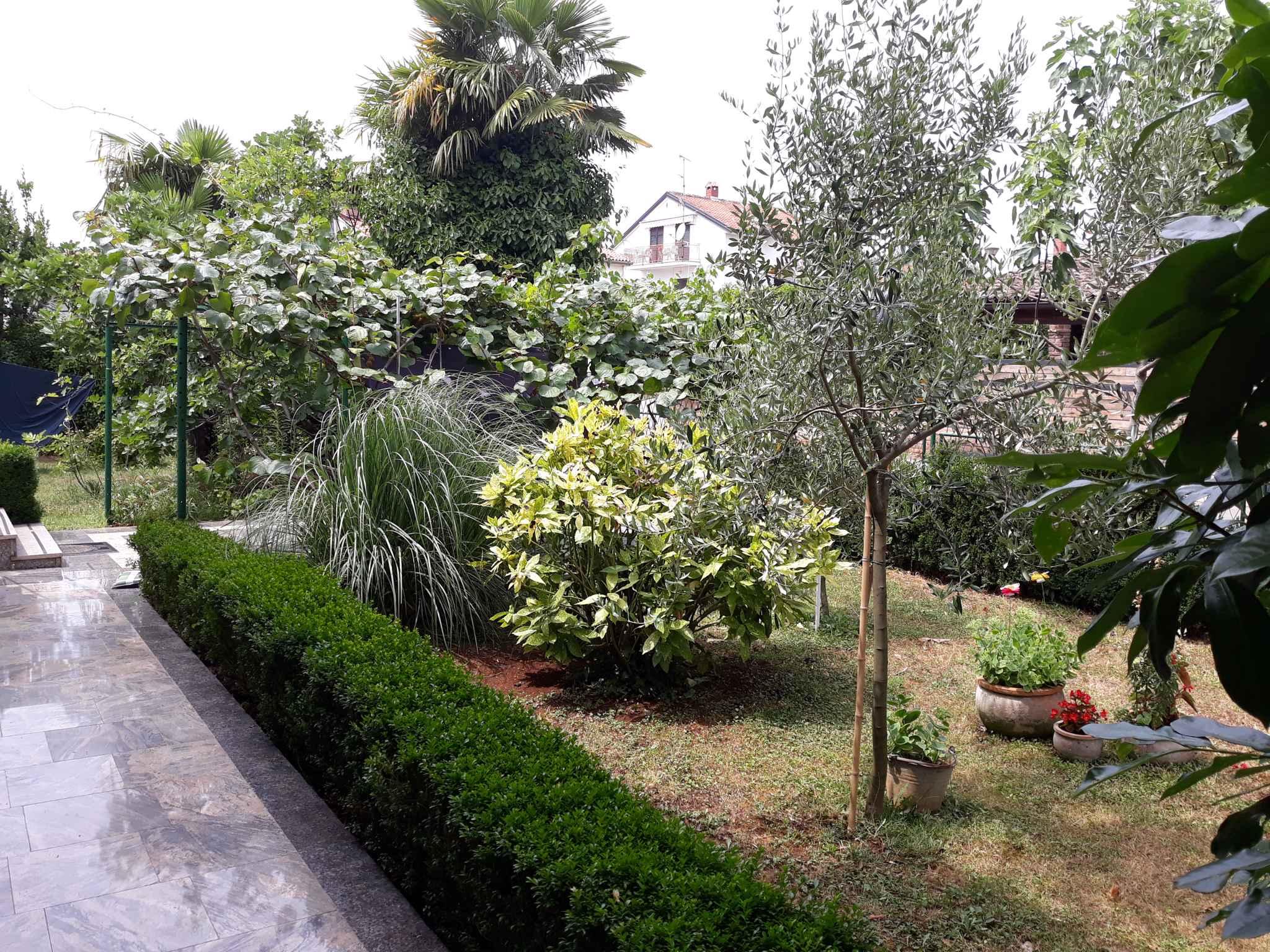 Ferienwohnung mit Internet und Klimaanlage (280326), Porec, , Istrien, Kroatien, Bild 6