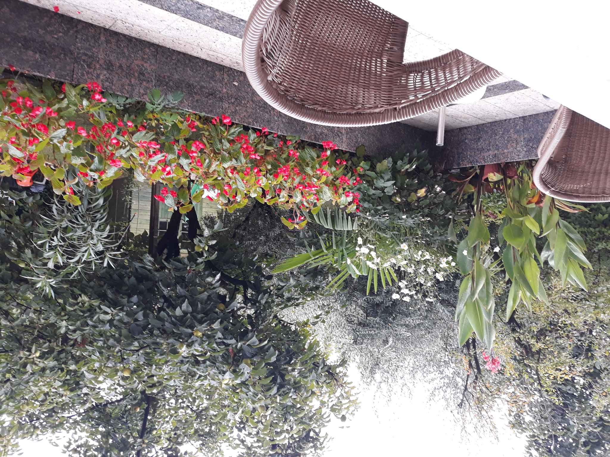 Ferienwohnung s grilom i vrtnim namjeatajem (280325), Porec, , Istrien, Kroatien, Bild 3