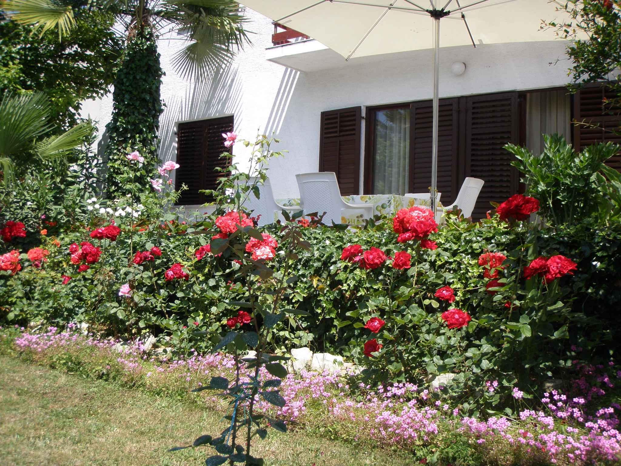 Ferienwohnung mit 2 Balkons (280344), Porec, , Istrien, Kroatien, Bild 4