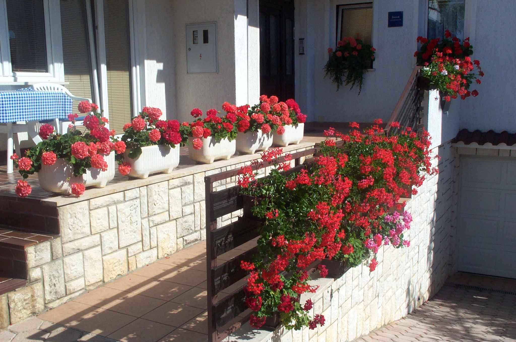 Ferienwohnung mit Pool (280350), Porec, , Istrien, Kroatien, Bild 11