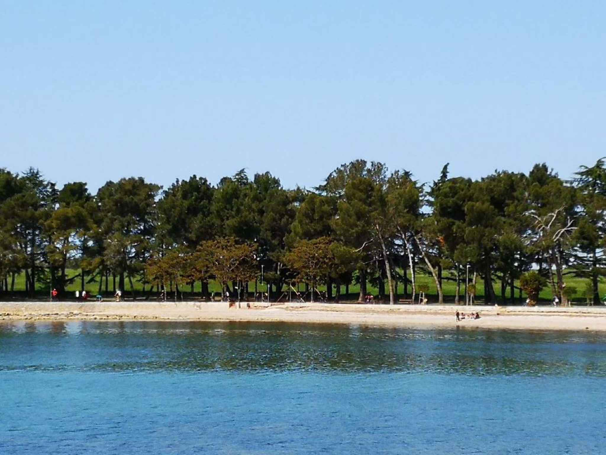 Ferienwohnung mit 14 qm Terrasse (279761), Fažana, , Istrien, Kroatien, Bild 32