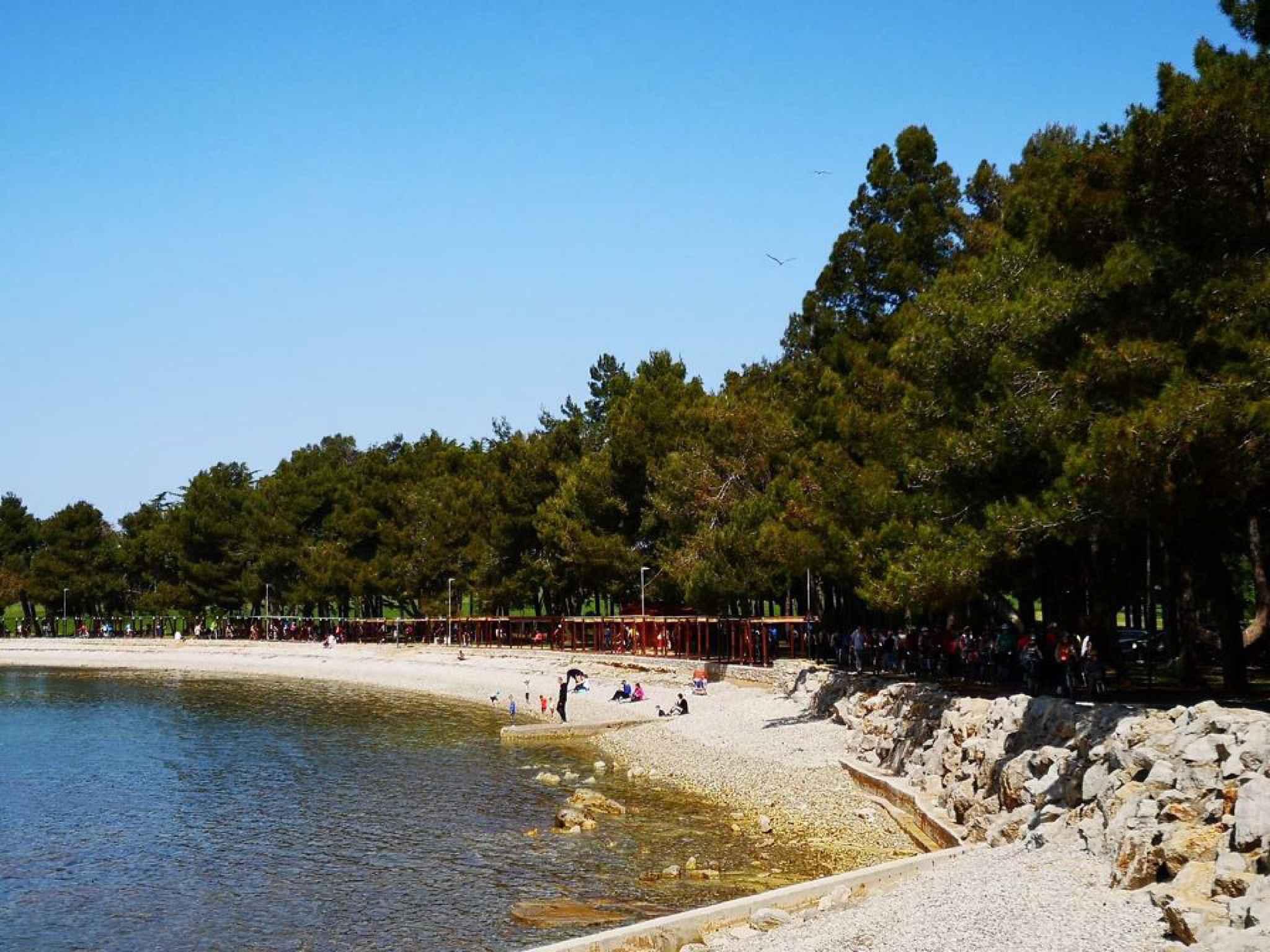 Ferienwohnung mit 14 qm Terrasse (279761), Fažana, , Istrien, Kroatien, Bild 37