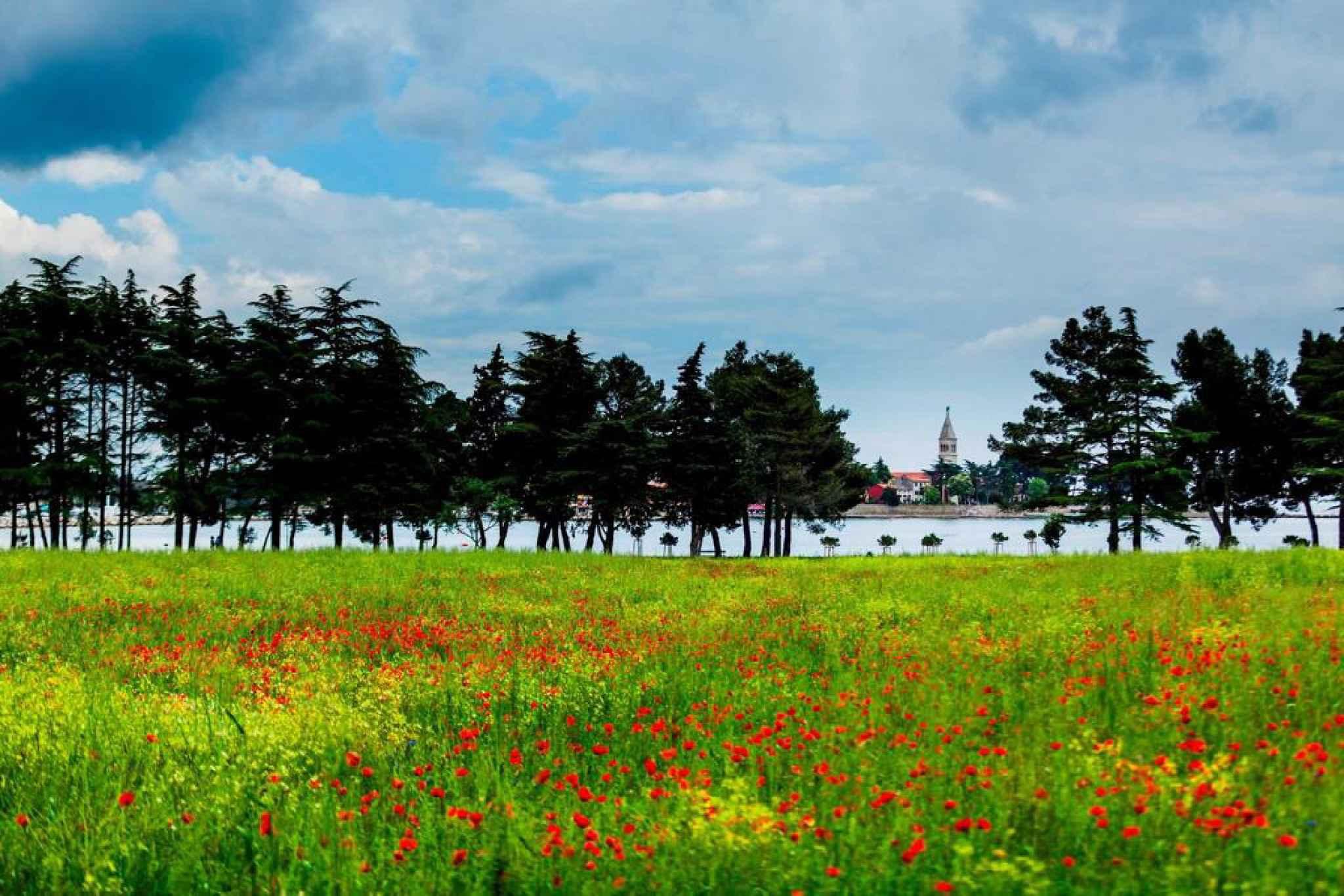 Ferienwohnung mit 14 qm Terrasse (279761), Fažana, , Istrien, Kroatien, Bild 42