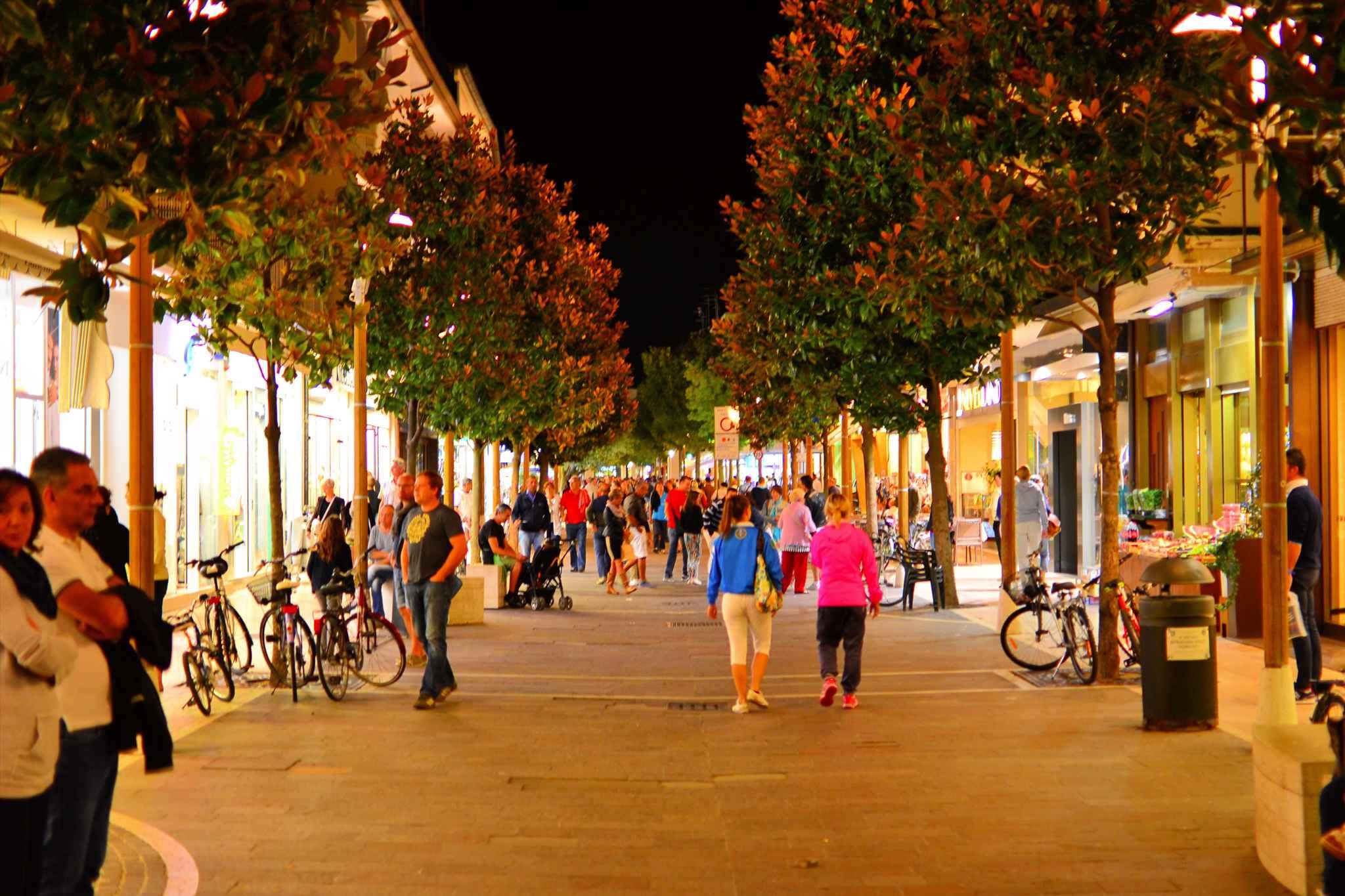 Ferienwohnung am Yachthafen (279390), Lignano Sabbiadoro, Adriaküste (Friaul-Julisch Venetien), Friaul-Julisch Venetien, Italien, Bild 5