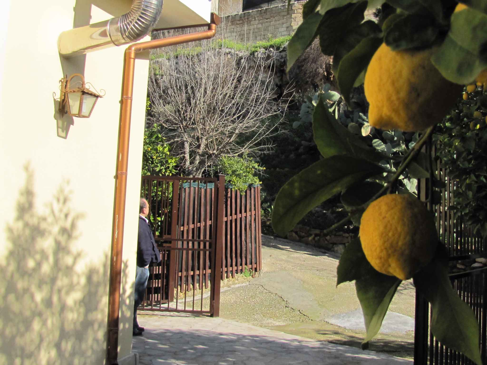 Maison de vacances mit Blick auf Zitronengarten (317534), Lido di Noto, Siracusa, Sicile, Italie, image 5