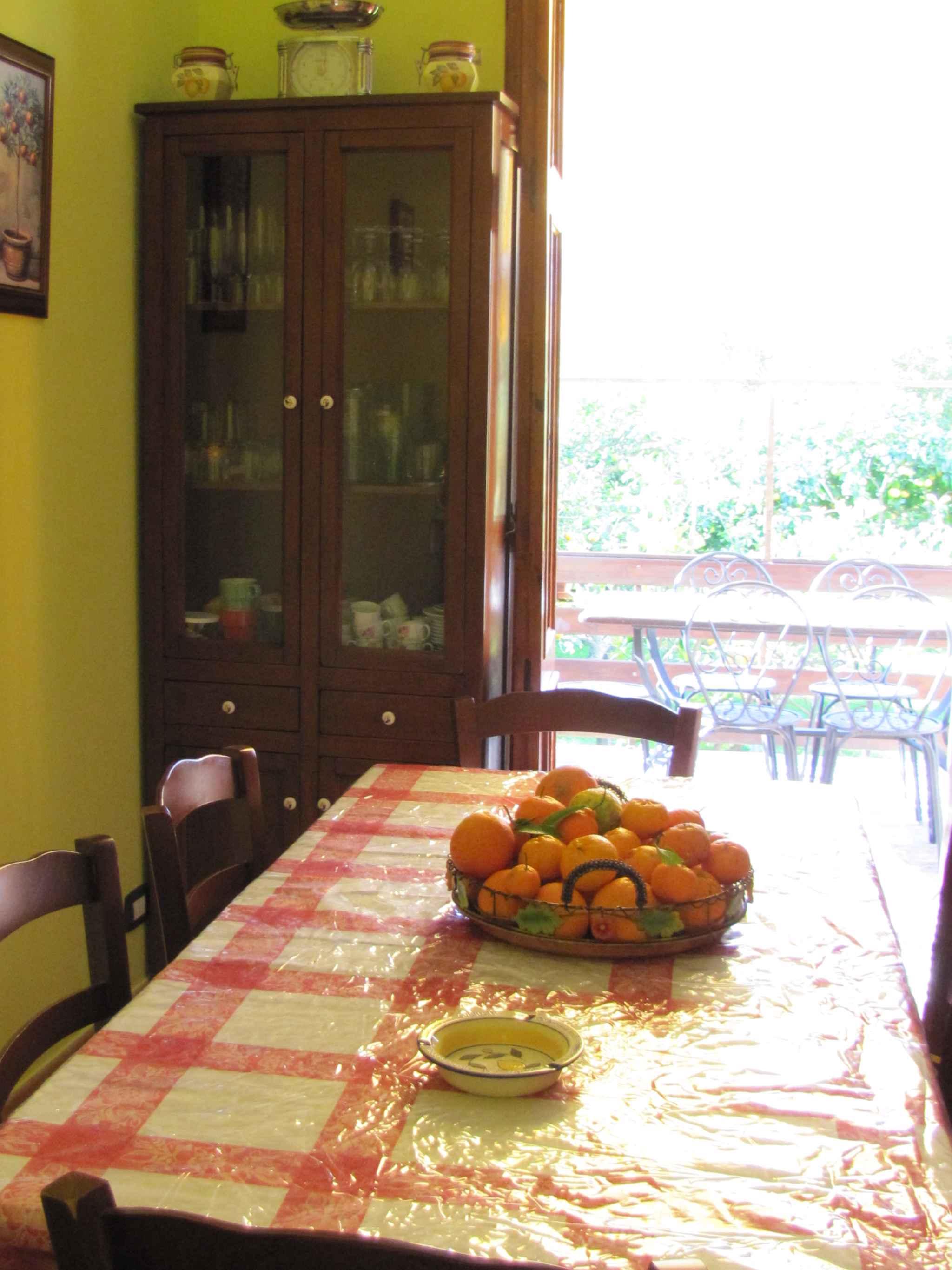 Maison de vacances mit Blick auf Zitronengarten (317534), Lido di Noto, Siracusa, Sicile, Italie, image 16