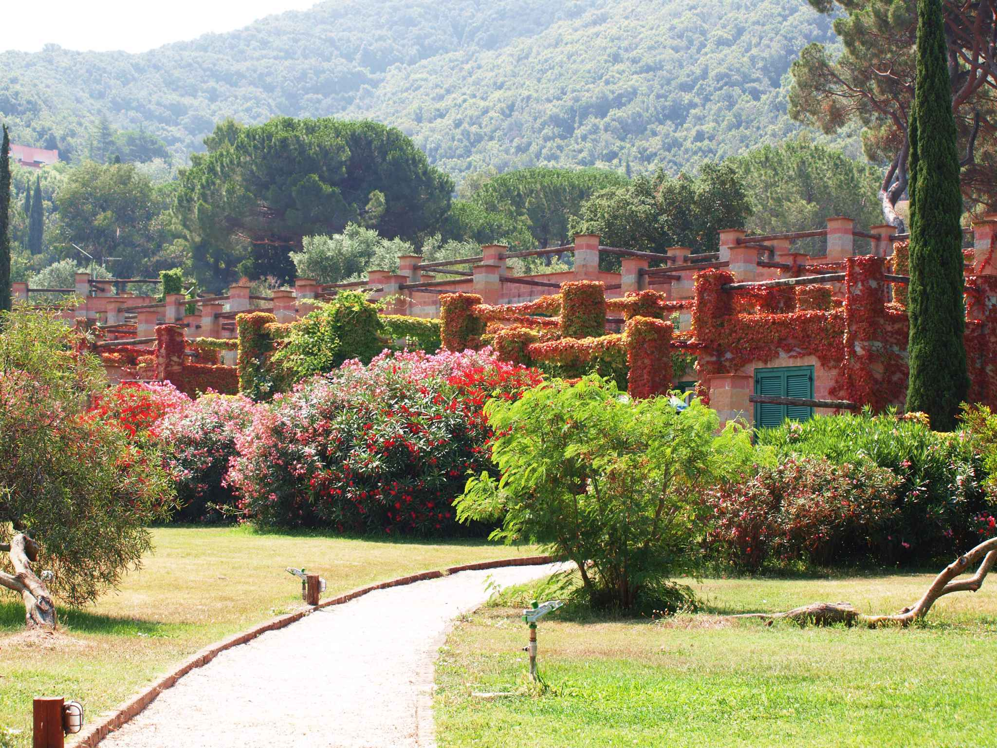 Ferienwohnung FerienWohnung Residence Sant'Anna del Volterraio (402381), Rio Nell'Elba, Elba, Toskana, Italien, Bild 7