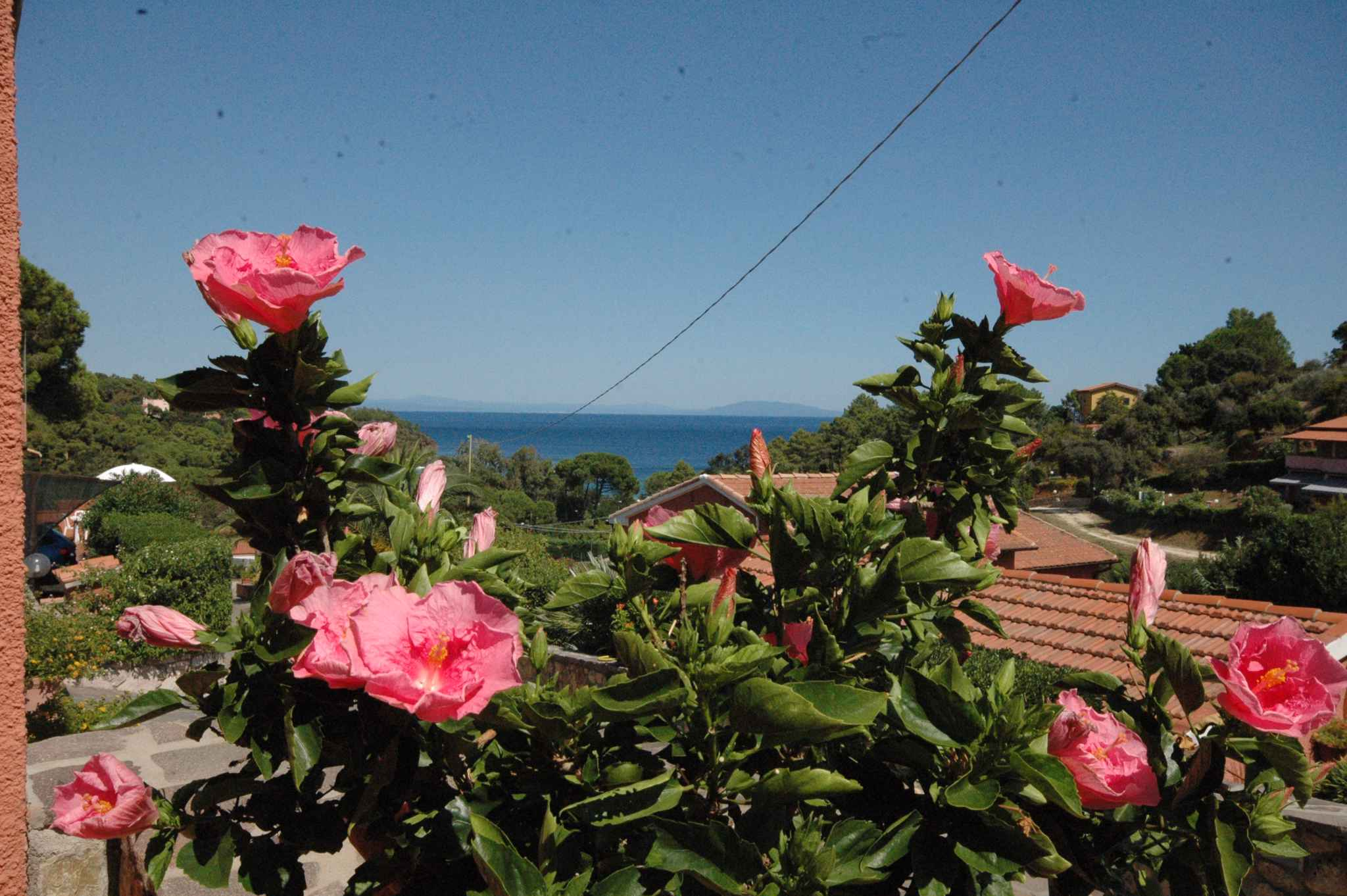 Ferienwohnung mit Panoramablick (404925), Capoliveri, Elba, Toskana, Italien, Bild 7