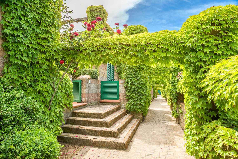 Ferienwohnung Residence Sant'Anna del Volterraio (403209), Rio Nell'Elba, Elba, Toskana, Italien, Bild 2