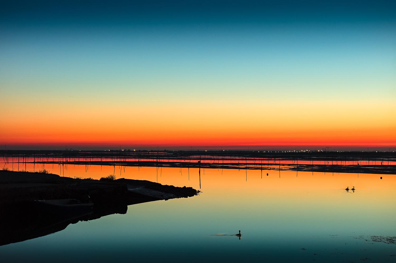 Ferienwohnung 500 m vom Hundestrand entfernt (438012), Rosolina Mare, Rovigo, Venetien, Italien, Bild 20