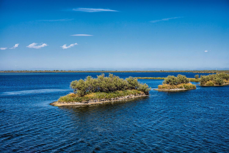 Ferienwohnung 500 m vom Hundestrand entfernt (438012), Rosolina Mare, Rovigo, Venetien, Italien, Bild 24
