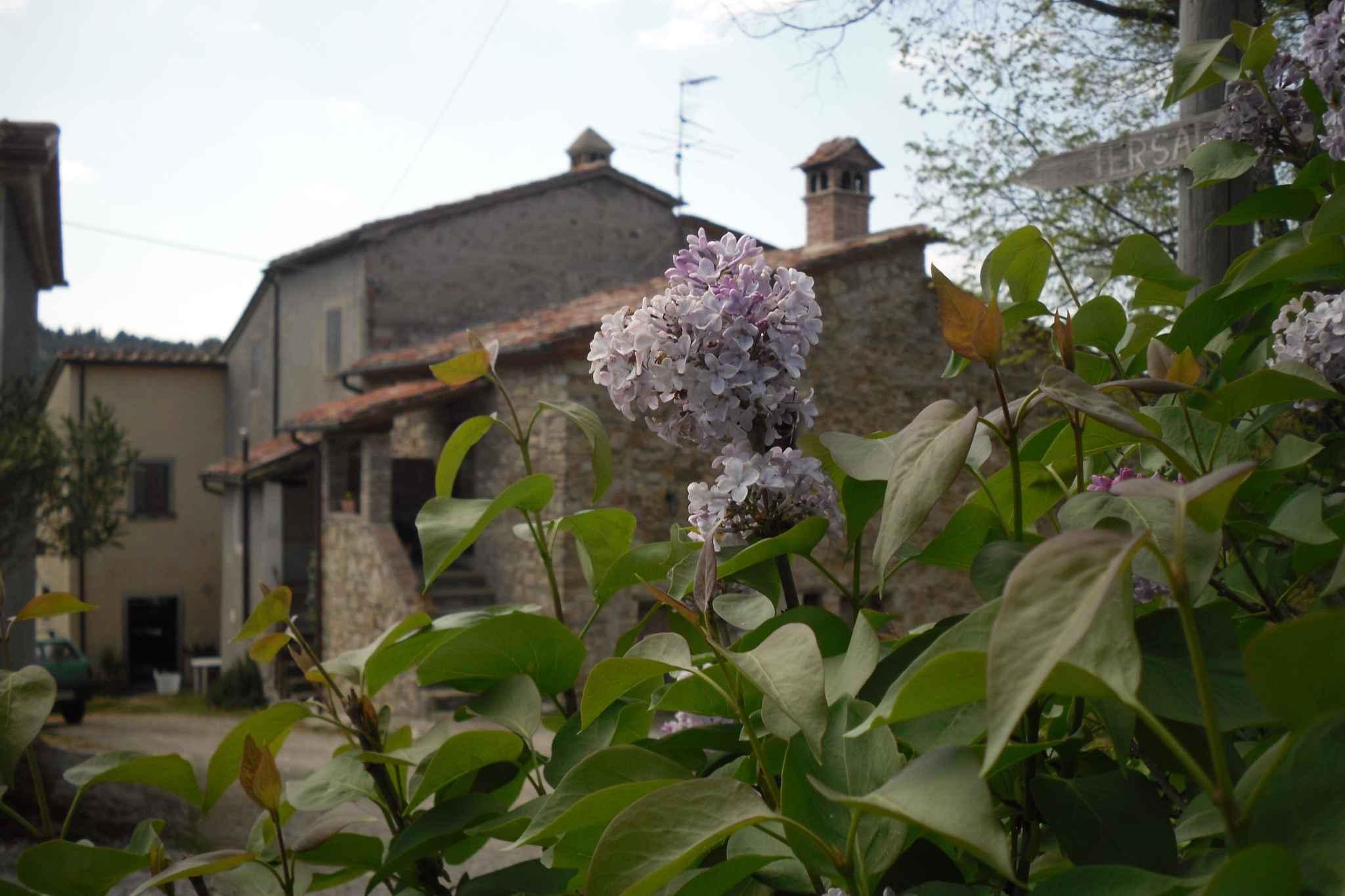 Ferienhaus inmitten von Natur mit Privatsee  in Italien