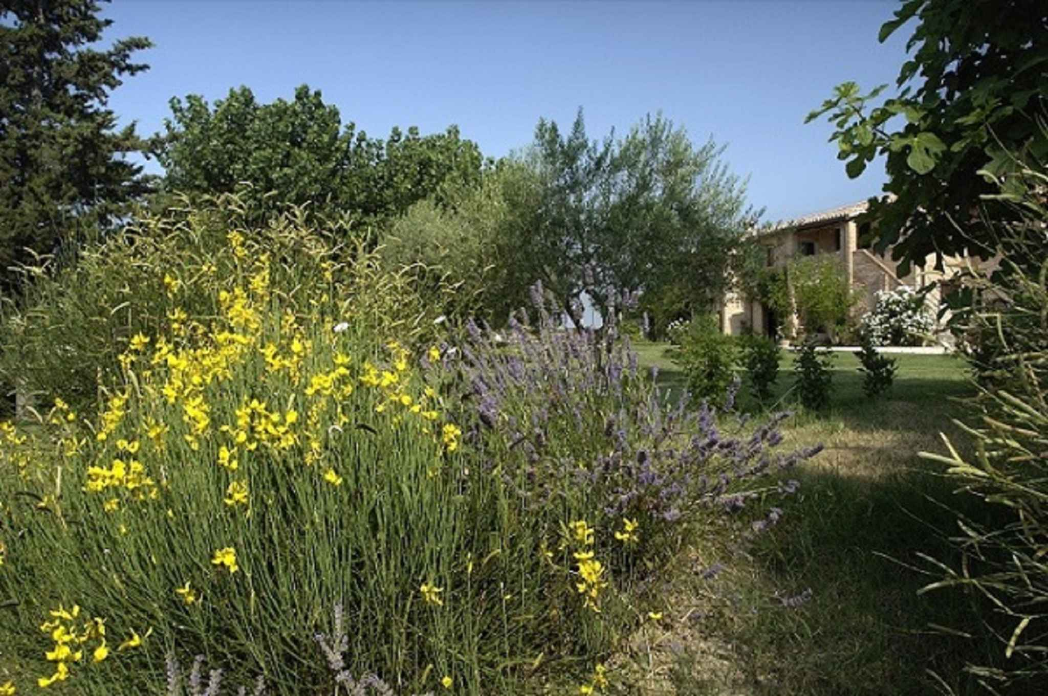 Ferienhaus per 15 persone con piscina (602147), Jesi, Ancona, Marken, Italien, Bild 9