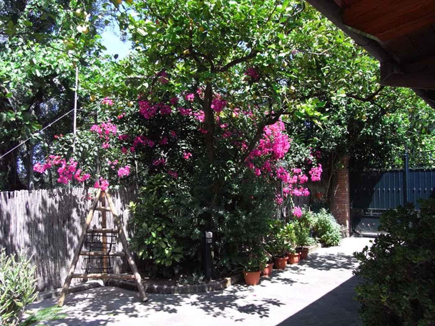 Ferienwohnung Suite GIGLIO (693595), Sorrento (IT), Amalfiküste, Kampanien, Italien, Bild 10
