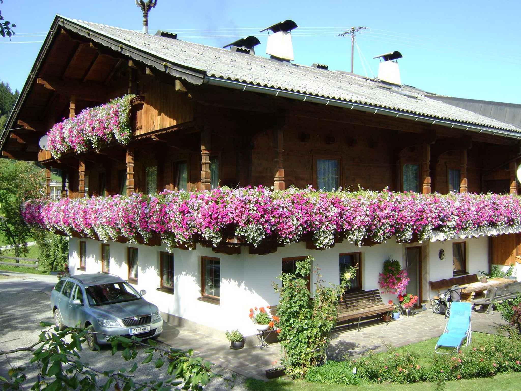 Ferienwohnung mit Blick auf die Zillertaler Bergwe   Tirol