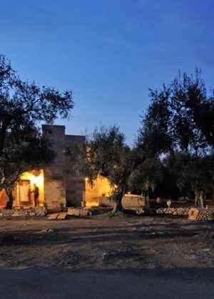 Ferienwohnung in einem Olivenhain (778495), Spongano, Lecce, Apulien, Italien, Bild 4