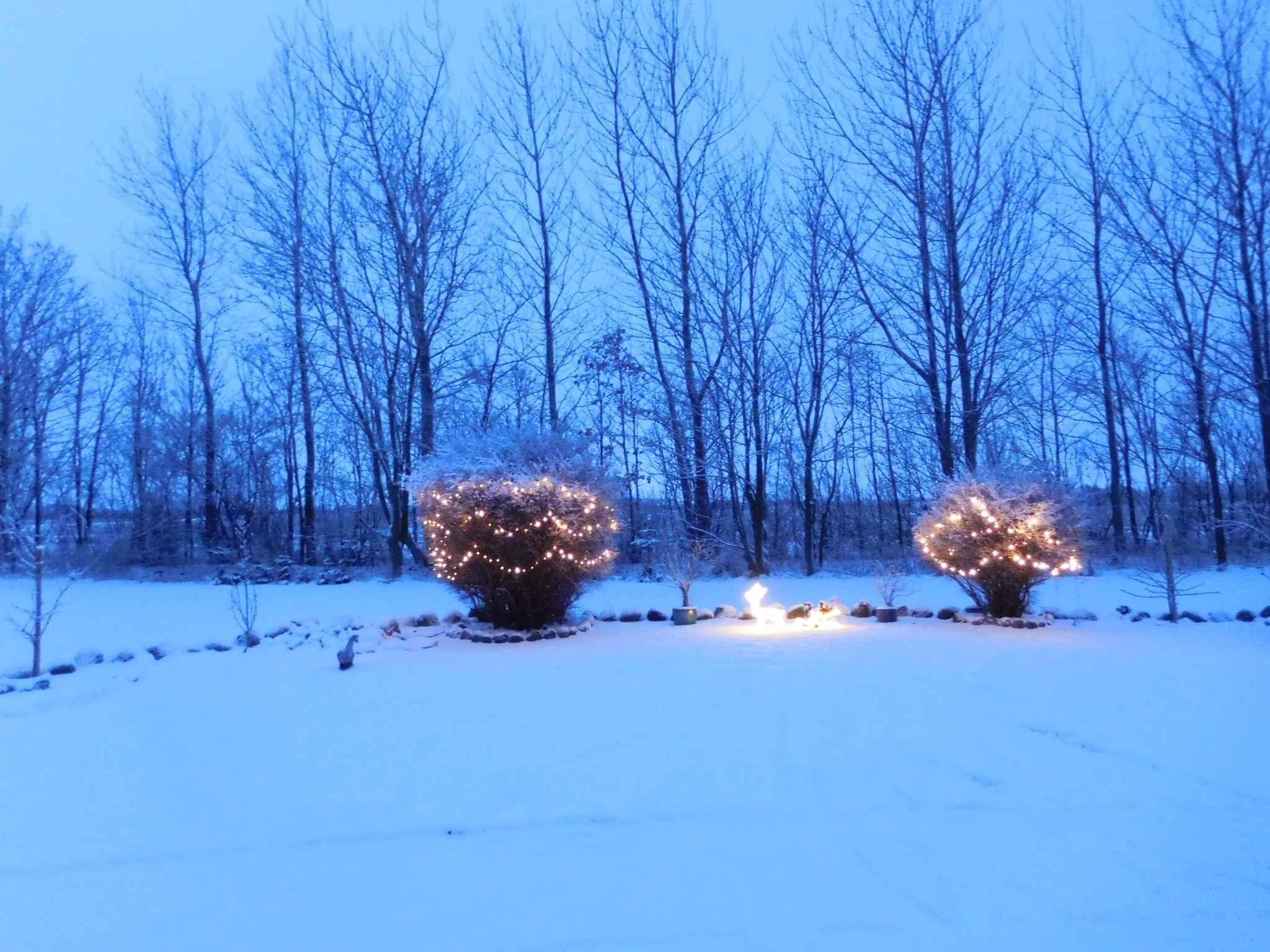 Ferienwohnung inkl. Kaminofen und schönem Blick auf die umliegenden Felder (1670562), Fjerritslev, , Nordwestjütland, Dänemark, Bild 13