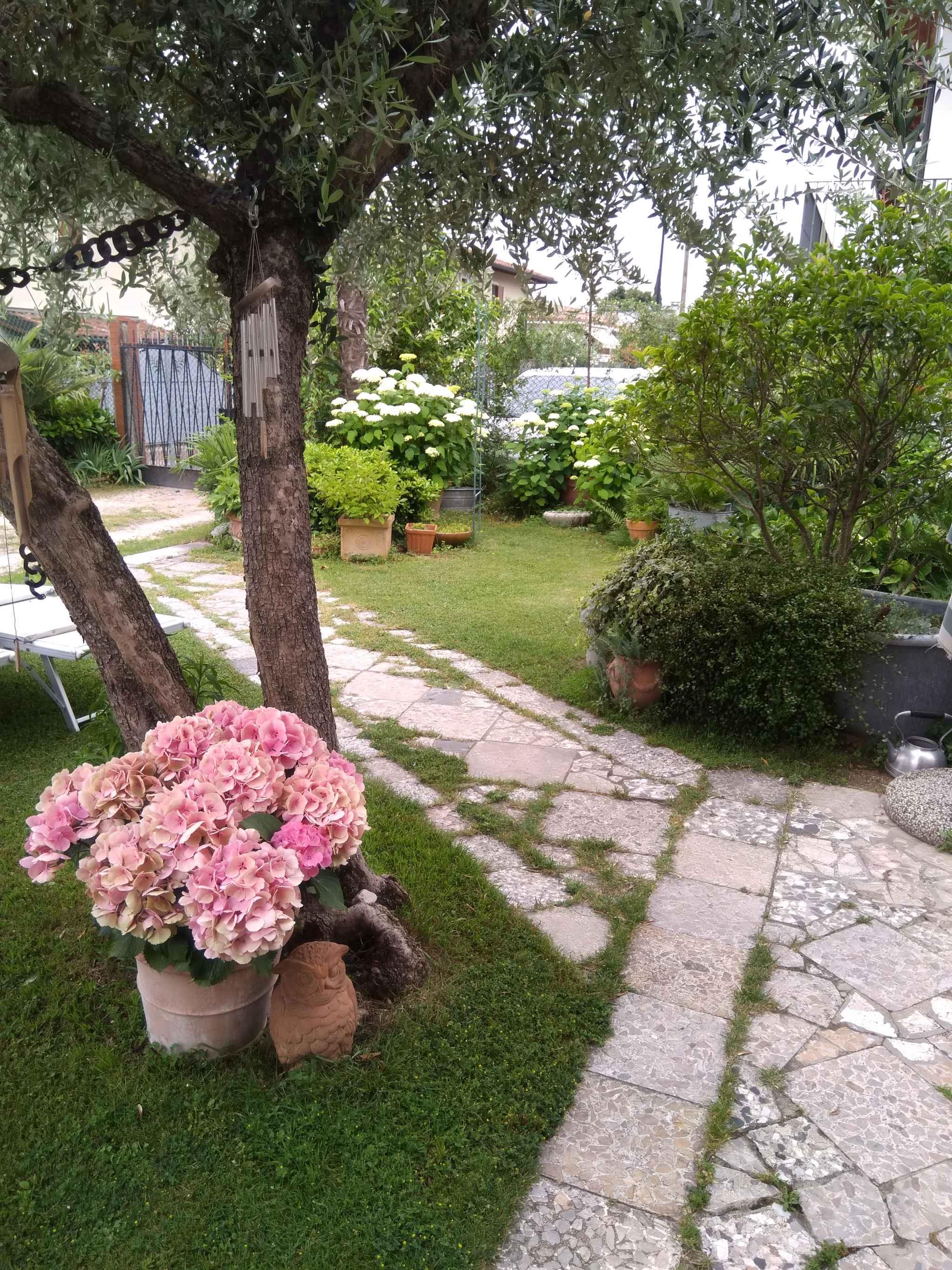 Ferienwohnung 400 m vom See mit Garten und Grill (1670470), Padenghe sul Garda, Gardasee, Lombardei, Italien, Bild 15