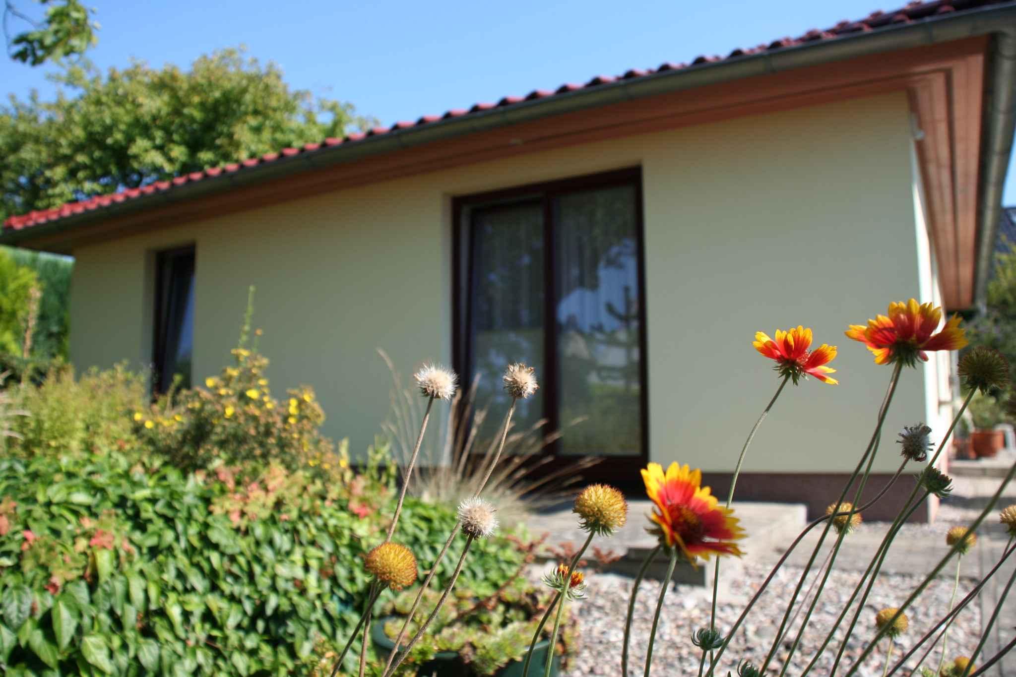 Ferienhaus Bungalow Ferienhaus mit Terrasse und Garten (358672), Bergen (Rügen), Rügen, Mecklenburg-Vorpommern, Deutschland, Bild 4