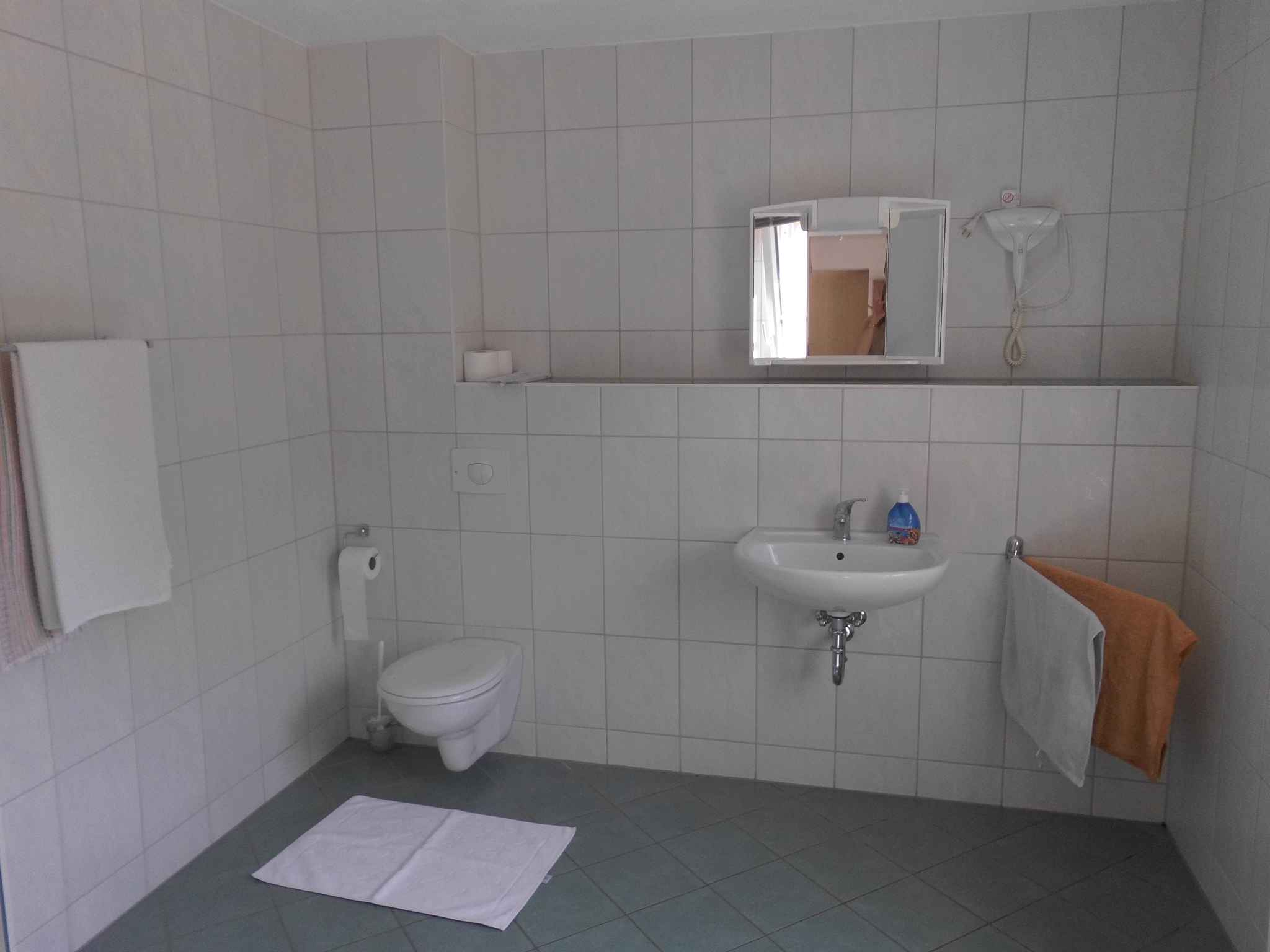 Holiday apartment in ruhiger Waldrandlage (322516), Sayda, The Ore Mountains, Saxony, Germany, picture 12