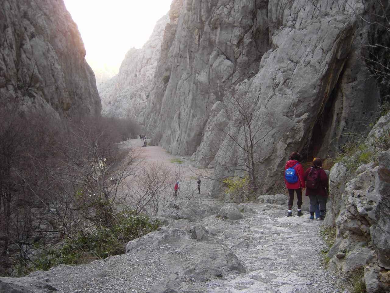 Ferienwohnung 50 m vom Meer und nahe des Nationalparks Paklenica (319351), Starigrad Paklenica, , Dalmatien, Kroatien, Bild 11