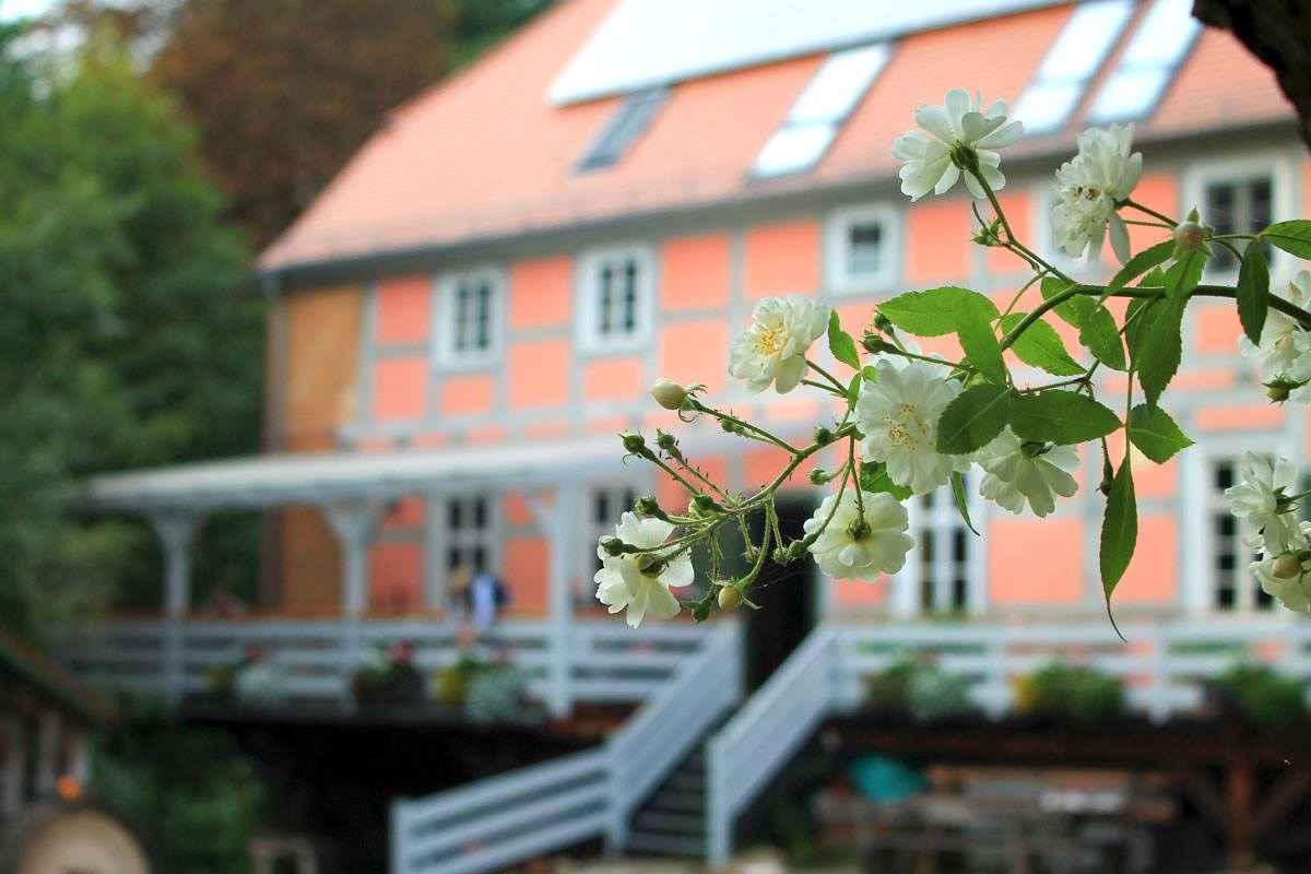 Ferienhaus in einer historischen Wassermühle Ferienhaus  Brandenburg