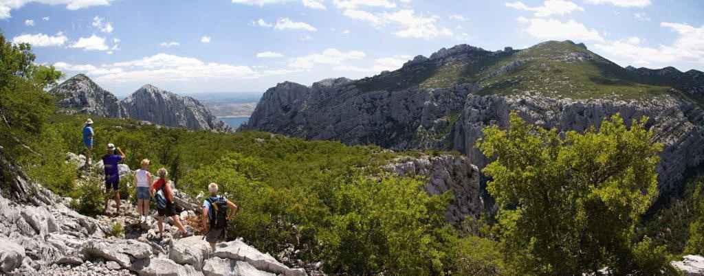 Ferienwohnung für 2 Familien geeignet (287922), Starigrad Paklenica, , Dalmatien, Kroatien, Bild 3