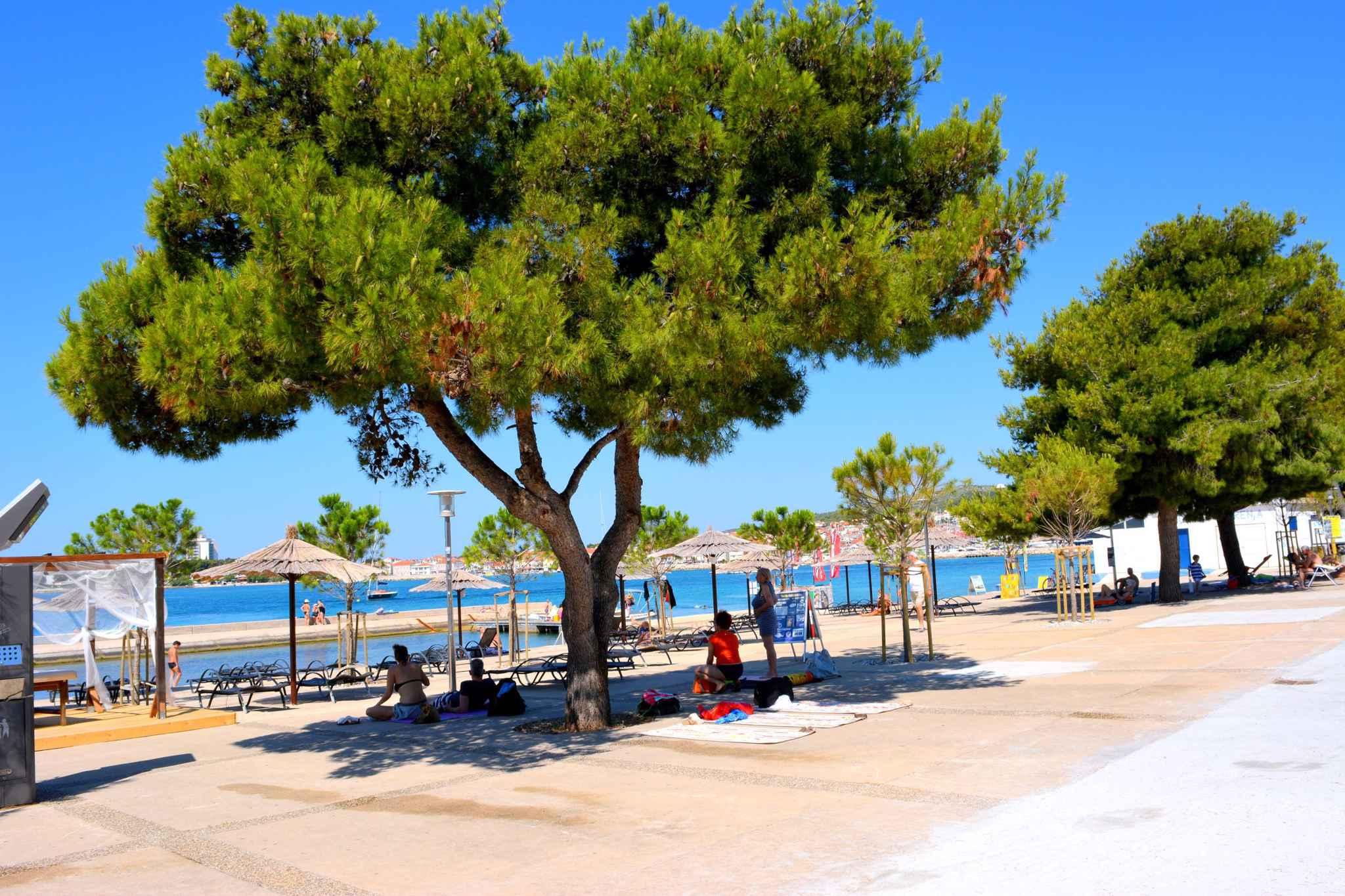Ferienwohnung mit überdachter Terrasse (278787), Vodice, , Dalmatien, Kroatien, Bild 12
