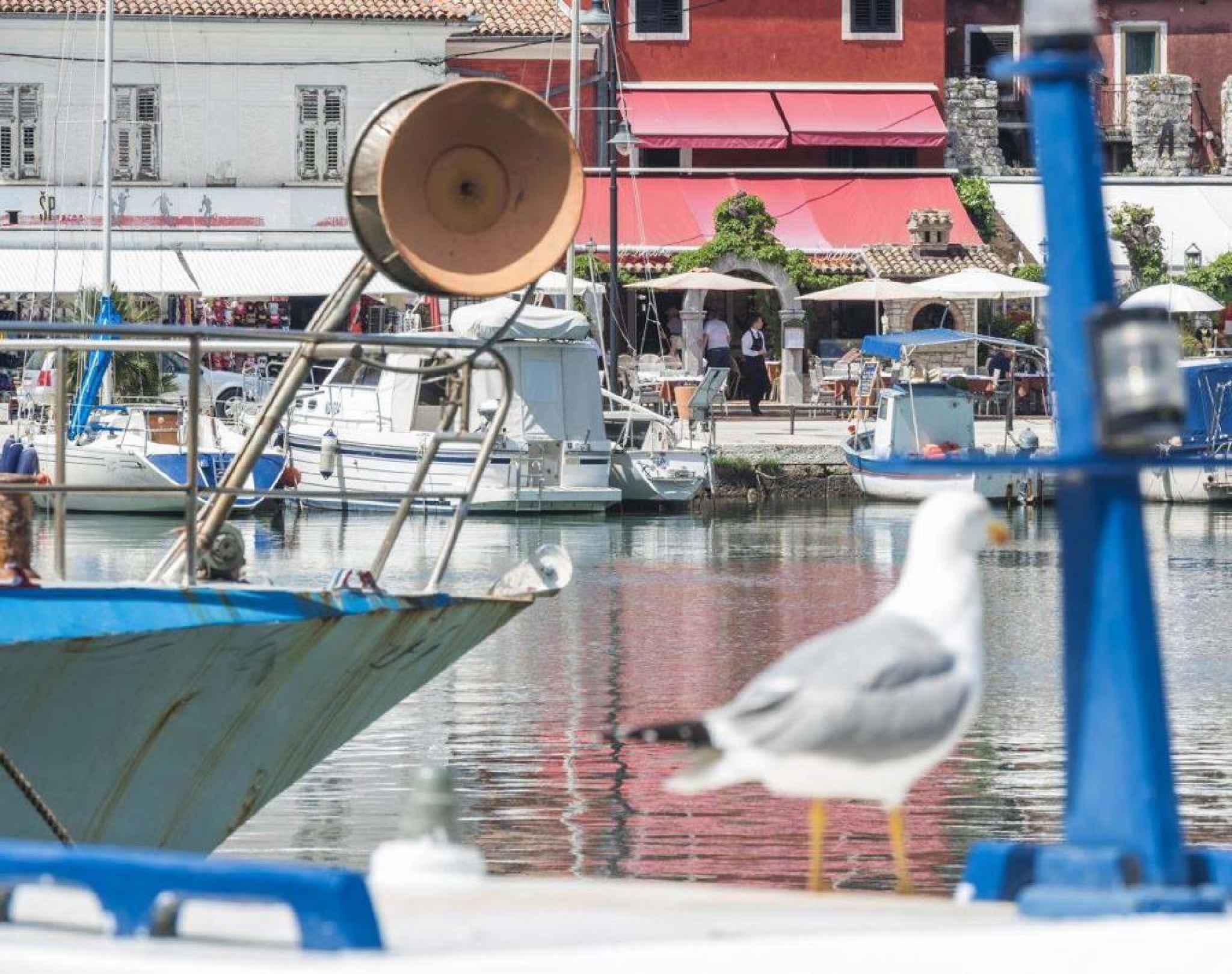 Ferienwohnung nur 50 m zur Adria (278904), Zadar, , Dalmatien, Kroatien, Bild 34