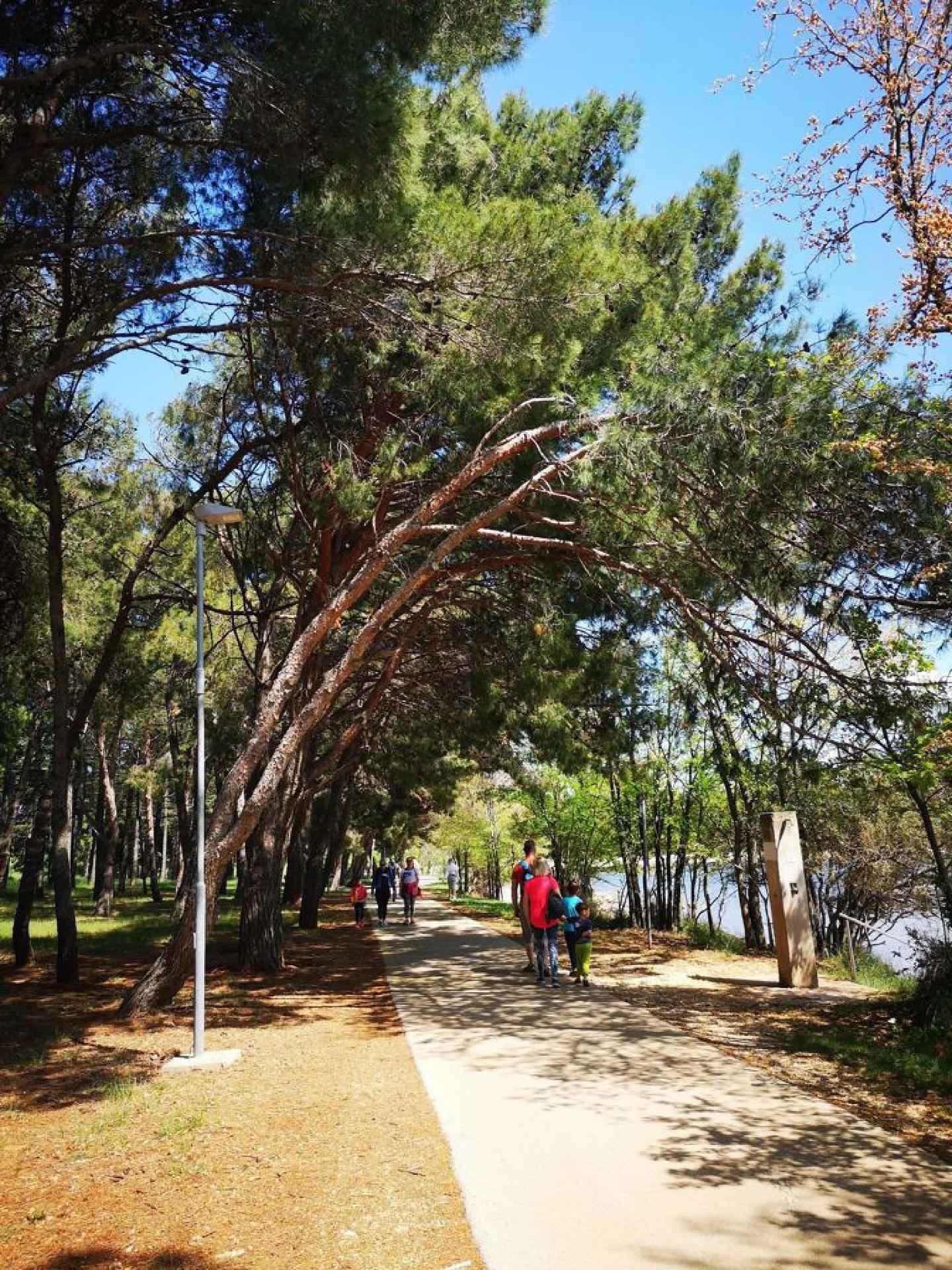 Ferienwohnung nur 50 m zur Adria (278904), Zadar, , Dalmatien, Kroatien, Bild 40
