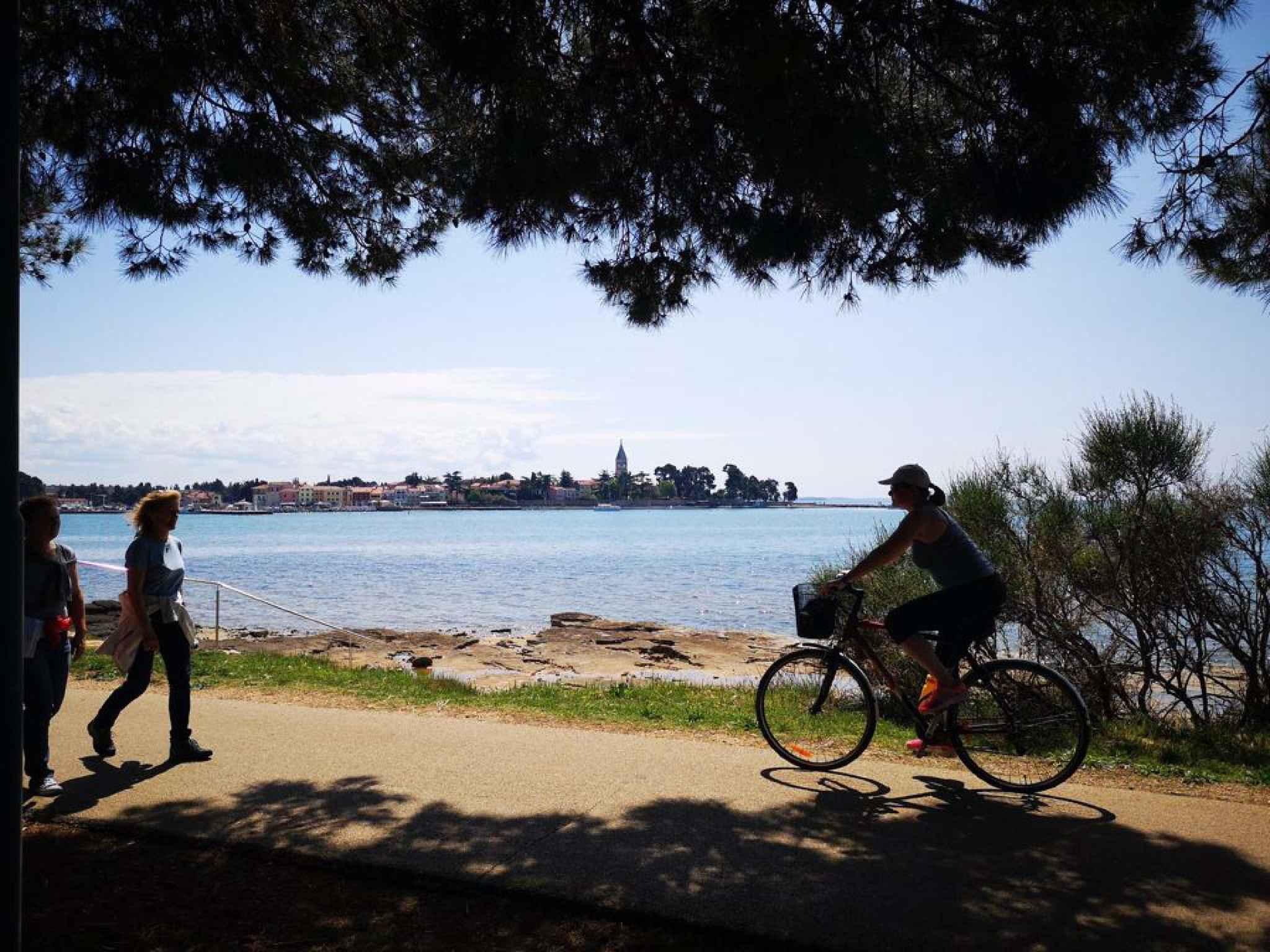 Ferienwohnung nur 50 m zur Adria (278904), Zadar, , Dalmatien, Kroatien, Bild 41