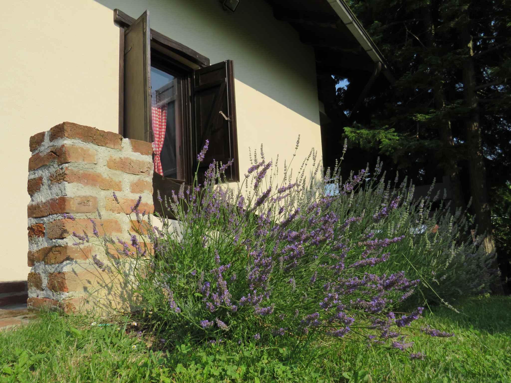 Ferienhaus mit Terrasse und Panoramablick auf die Natur (2579118), Orehovec, , Mittelkroatien, Kroatien, Bild 10