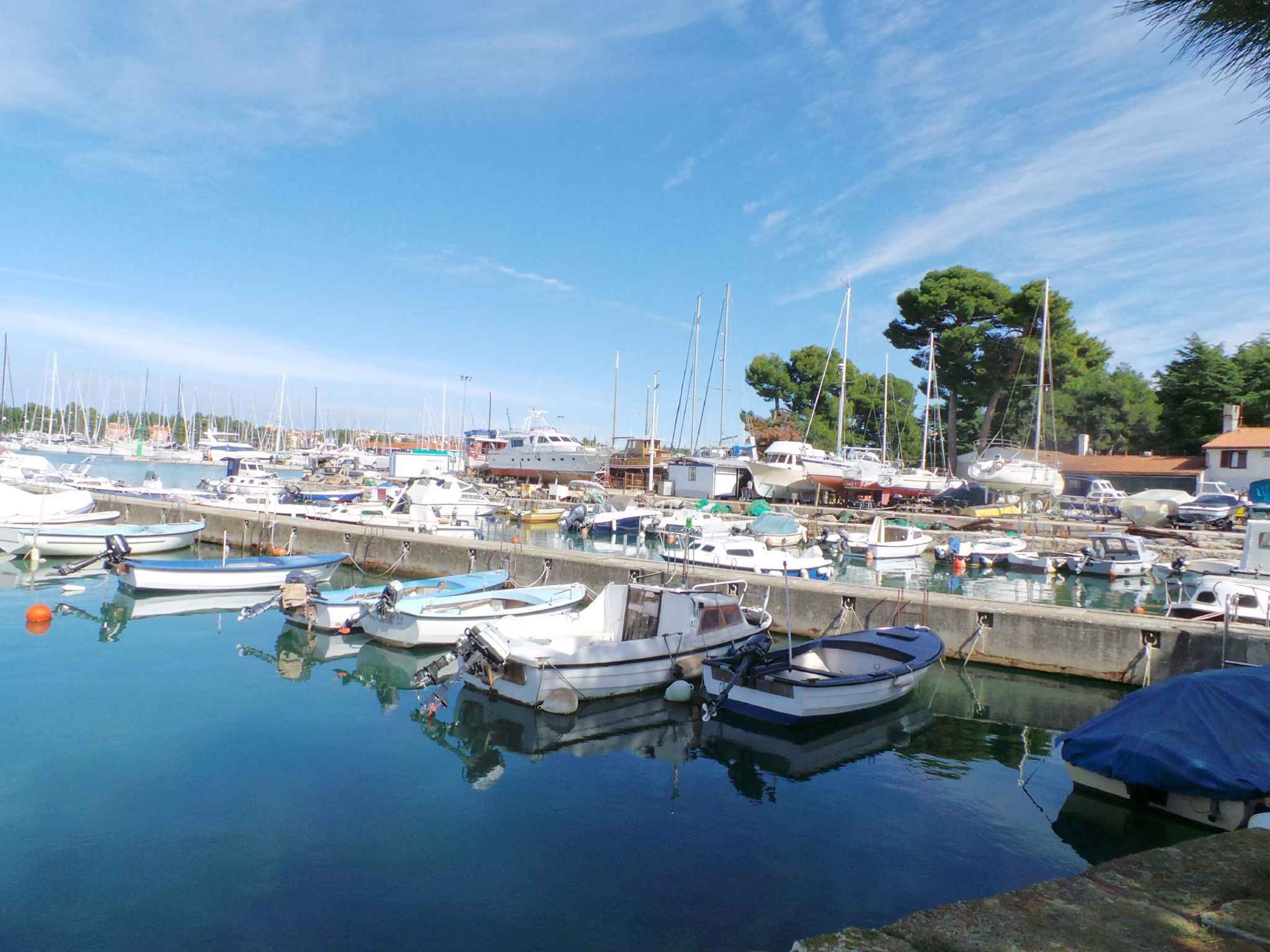 Ferienwohnung in Adrianähe mit Meerblick (278894), Zadar, , Dalmatien, Kroatien, Bild 35