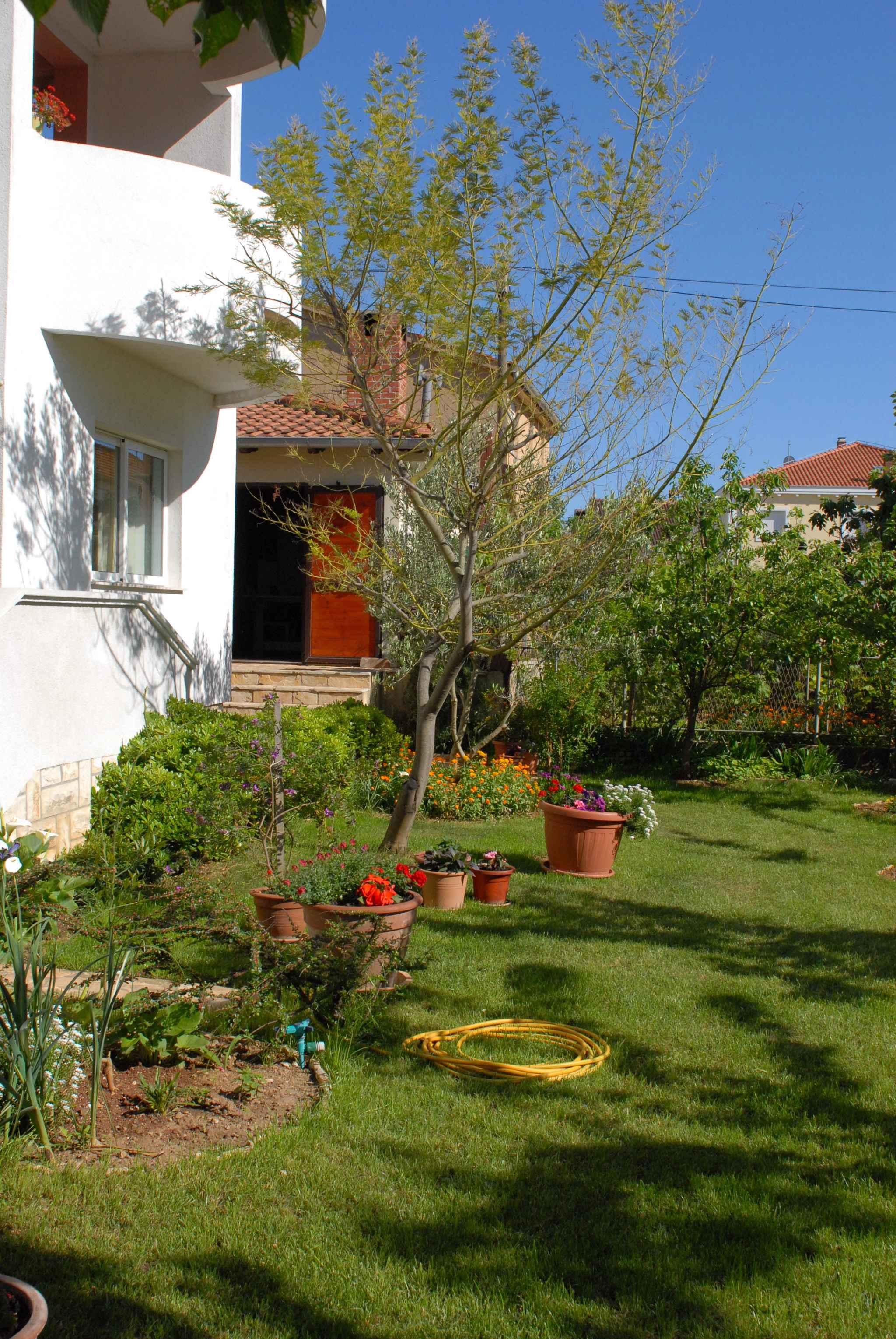 Ferienwohnung in Adrianähe mit Klimaanlage (278893), Zadar, , Dalmatien, Kroatien, Bild 6