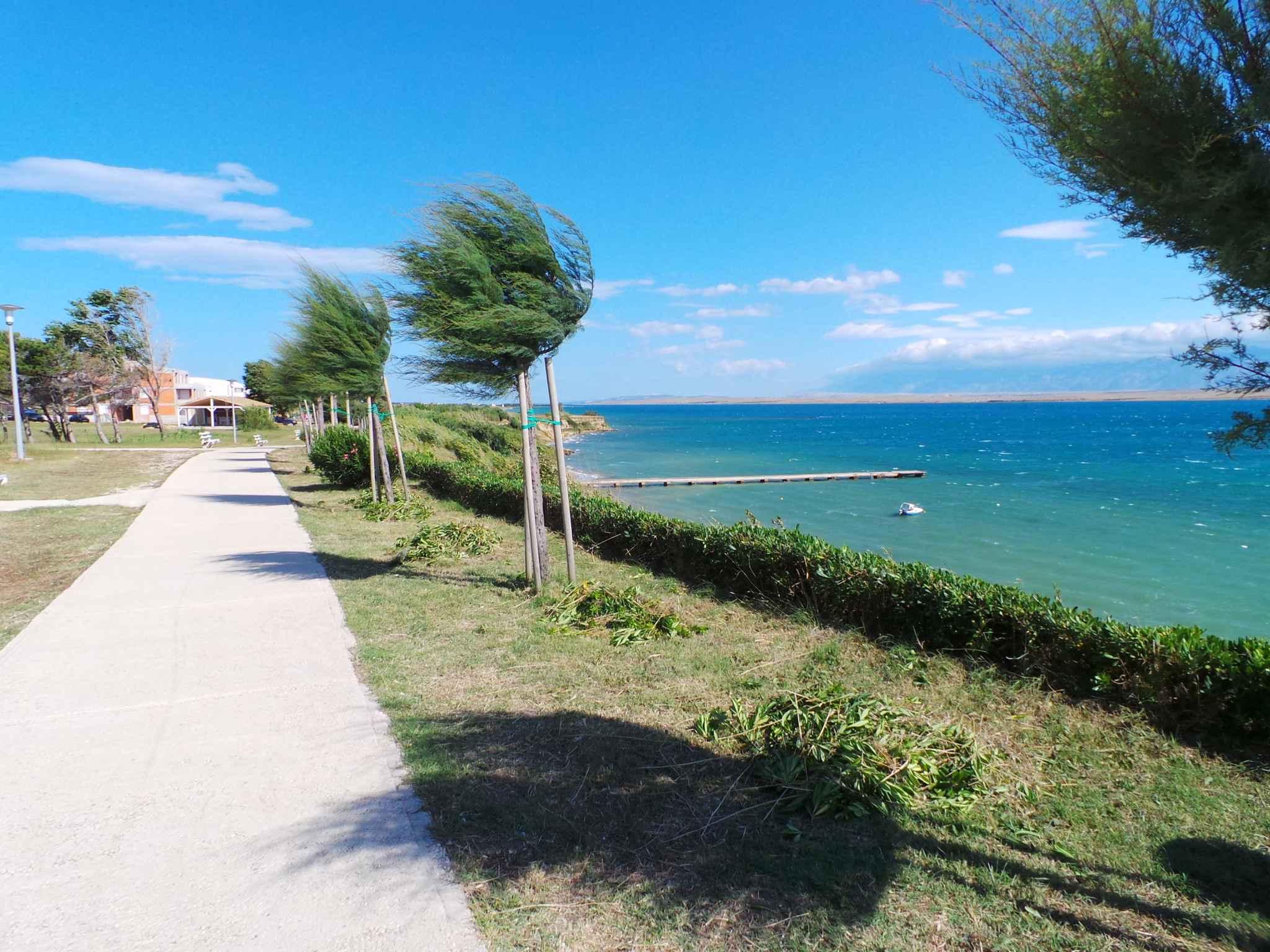 Ferienwohnung 200 m zur Adria (278890), Privlaka, , Dalmatien, Kroatien, Bild 10
