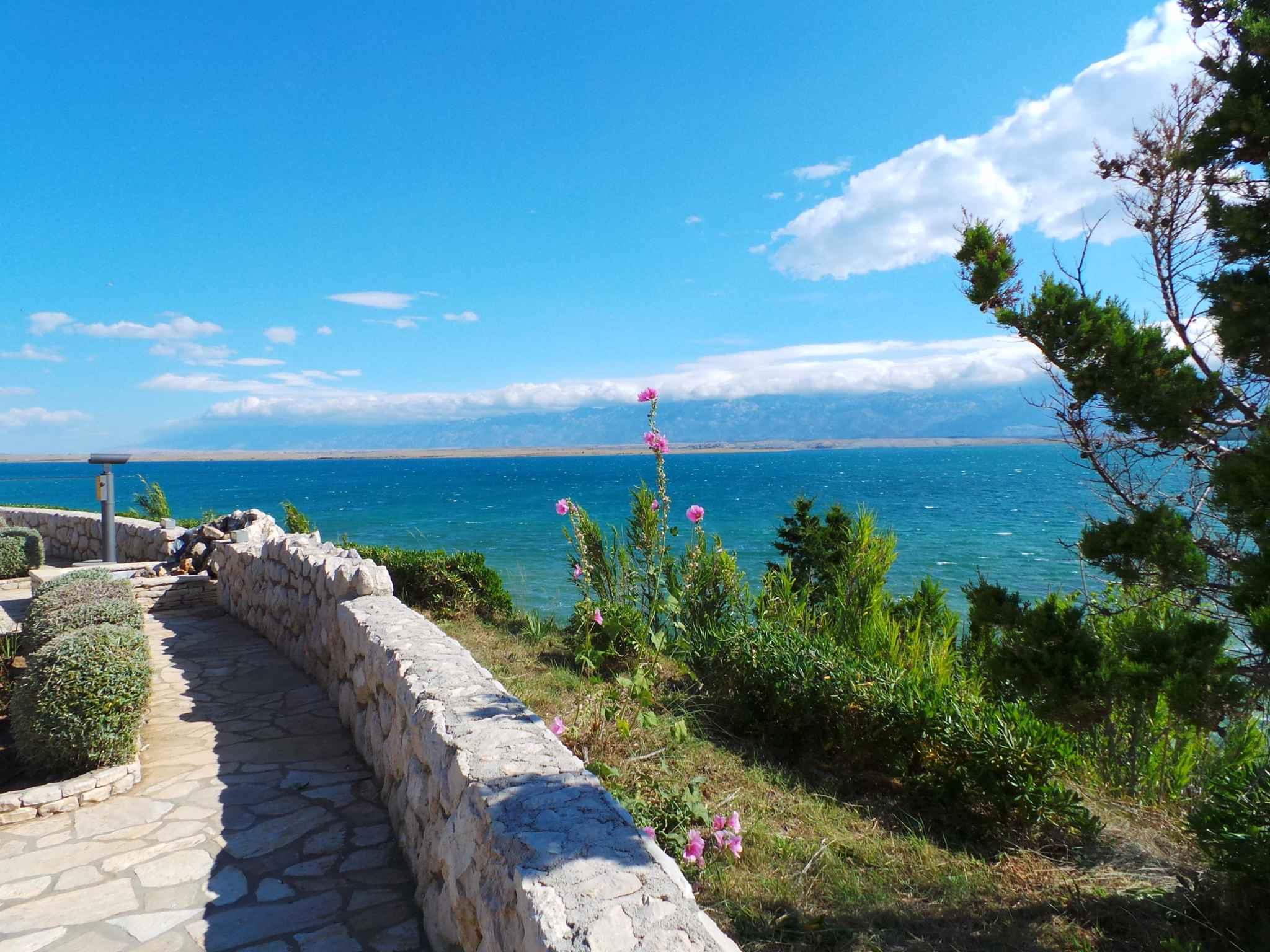 Ferienwohnung 200 m zur Adria (278890), Privlaka, , Dalmatien, Kroatien, Bild 11