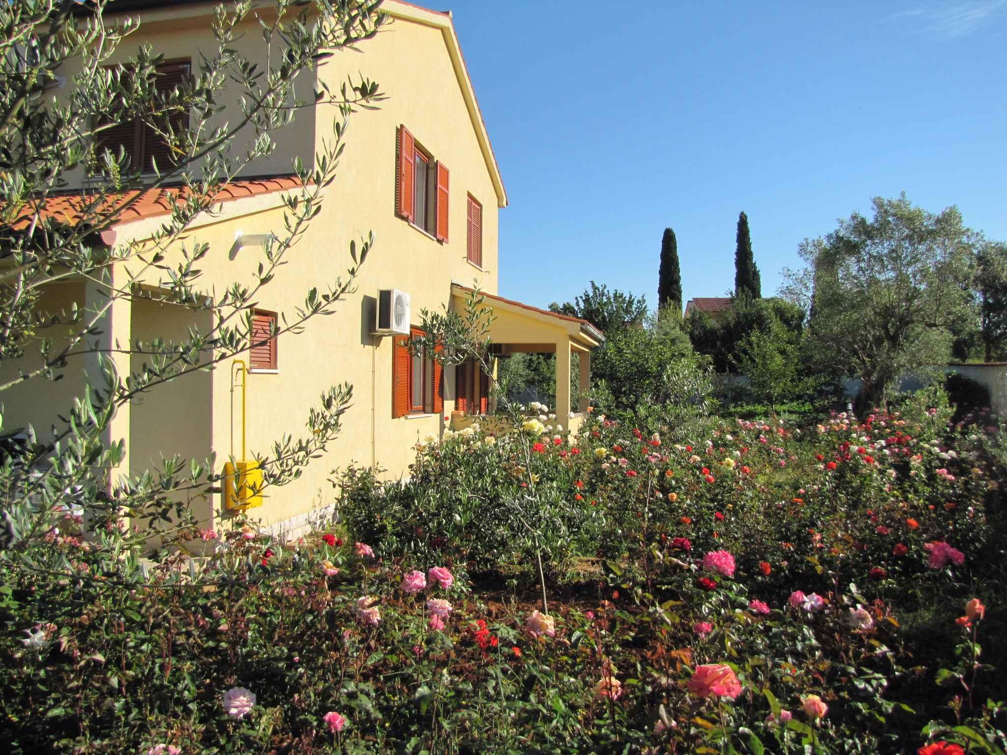 Ferienwohnung Studio mit Klimaanlage (280633), Pula, , Istrien, Kroatien, Bild 5