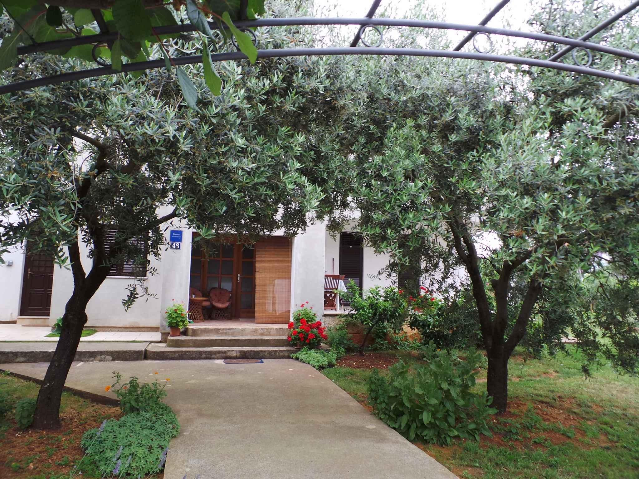 Ferienwohnung mit direktem Zugang zum Garten (279754), Fažana, , Istrien, Kroatien, Bild 3